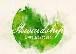 Stewardship Meeting @ ZOOM